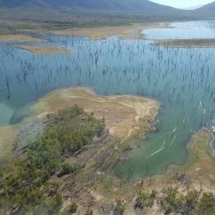 2018 Waterbird Survey