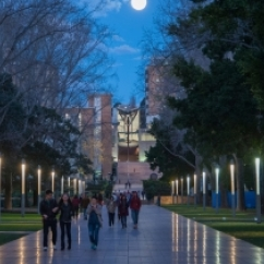 Universities – the smartest investment