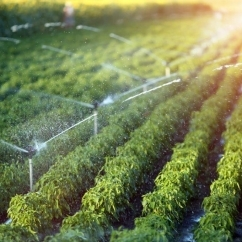 UNSW Global Water Institute Research - Agriculture