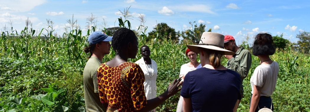 UNSW Global Water Institute Research - Students and locals gather among crops