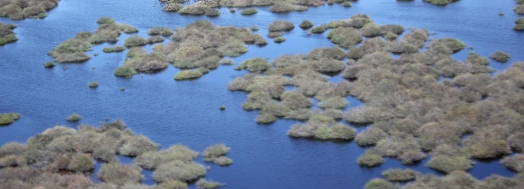 Nimmie-Caira Wetlands - UNSW Global Water Institute