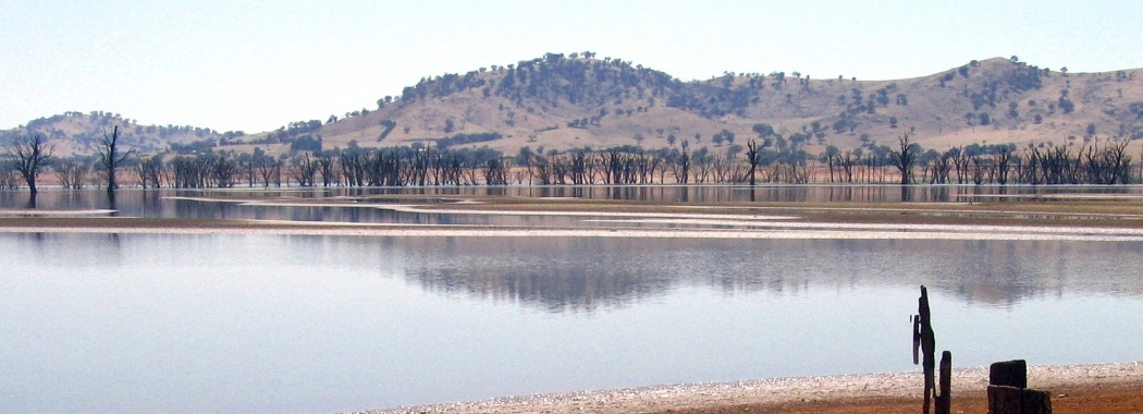 The Millennium drought had a huge impact on the Murray-Darling river system. Photo: Tim J. Keegan