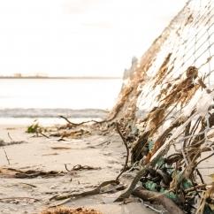 Marine Debris - Kelly McClintock - Unsplash